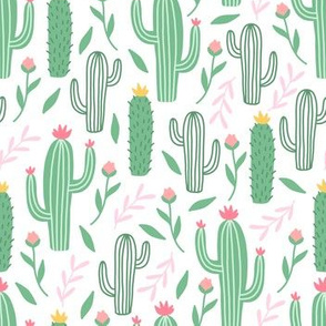 Cactus / green tropical summer
