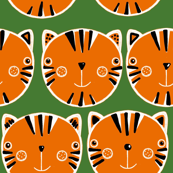 Tiger faces