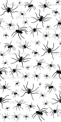 Spiders - black on white