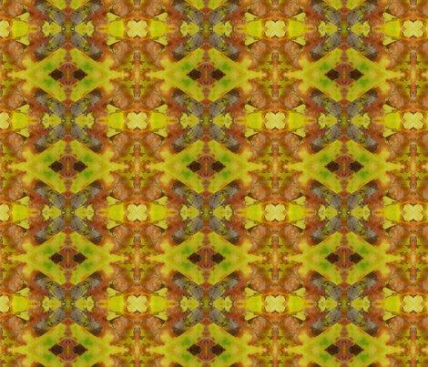 Yellow_beech_27_x_18__3_shop_preview