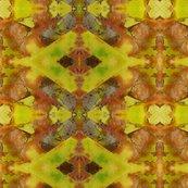 Yellow_beech_27_x_18__3_shop_thumb