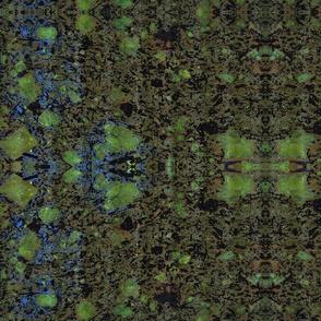 biotites
