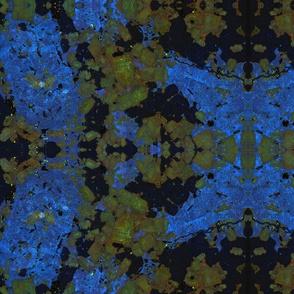 phenocrysts