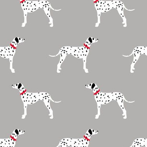 Dalmatians on grey