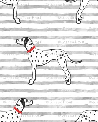 Dalmatians on grey stripes