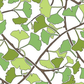 Ginkgo Leaves and Branches in Green on White