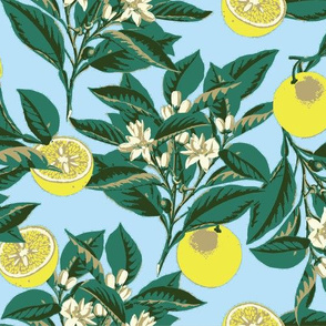 sf-lemons