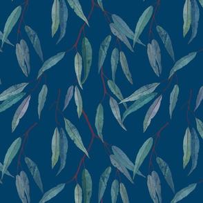 Eucalyptus leaves on blue /2/ scale