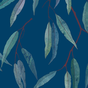 Eucalyptus leaves on blue /2/