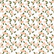 Rwatercolor-rose-wallpaper_shop_thumb