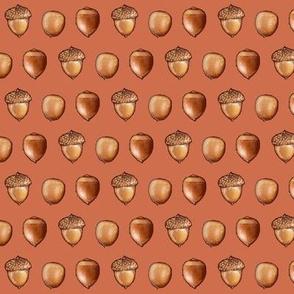 acorn, red