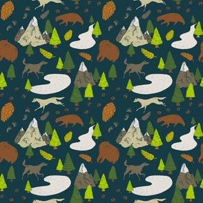 Wild Woods Thaw