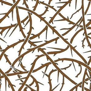 Interweaving Branches with Thorns on White Background