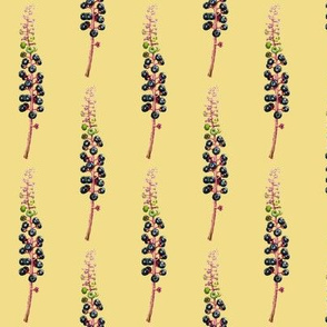 pokeberry sprig, yellow