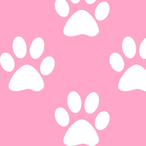 Three Inch White Paws on Carnation Pink fabric by mtothefifthpower on Spoonflower - custom fabric