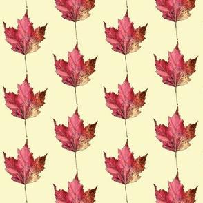 red leaf,  cream