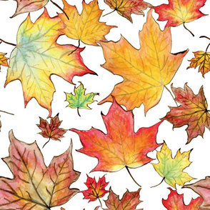 Autumn Maple Leaves 18 inch repeat