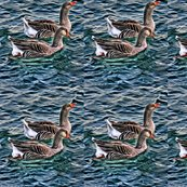 Rgeese_for_spoonflower_shop_thumb