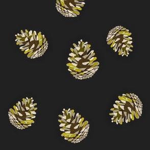 Pinecones on Black