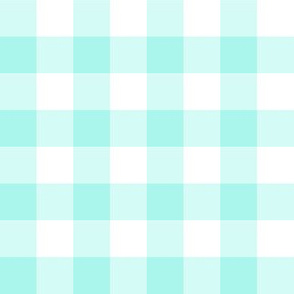 Big Old Gingham Aqua
