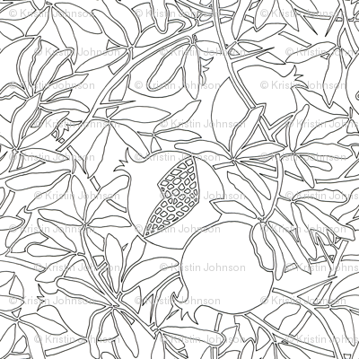 Pomegranate Tree Branches with Fruit and Leaves in Coloring Outlines