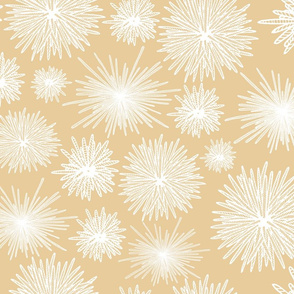 Hawaiian Tide Pool-Urchins Tan