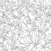 Leaves and Branches Coloring Outlines