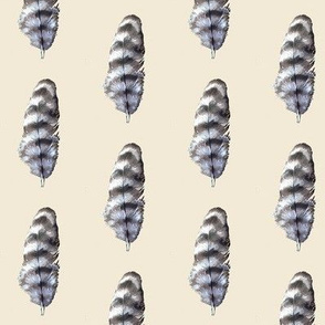 barred feather, off white