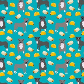 pitbull taco fabric - dogs and burritos design - teal