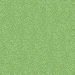 Paisley Microdot - Green 2