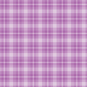 Small Lavender Purple Plaid
