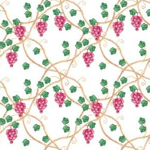 grape_vine_intertwine_C
