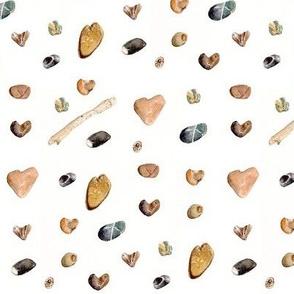 Beach Stones, Sticks & Shells