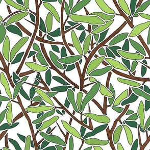 Leaves and Branches on White Background