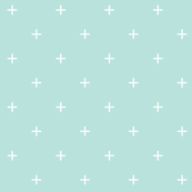 fair aqua cross plus // pantone color of the month march