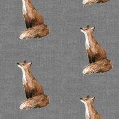 Rrbrooklyn_fox_shop_thumb
