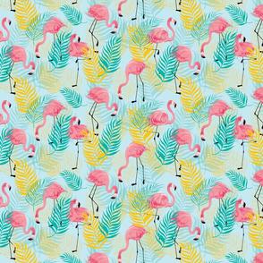 Go Go Flamingo!