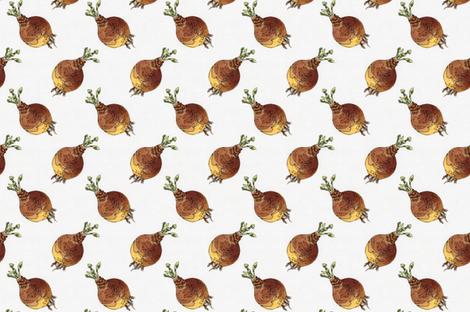 Diagonal beetroot fabric by zandloopster on Spoonflower - custom fabric