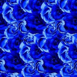 floral_blueness