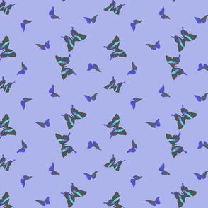 small_butterflies_lilac
