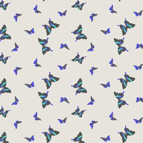 small_butterflies_stone