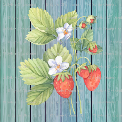 WATERCOLOR LARGE STRAWBERRY MIX ON WOOD AQUA BLUE GREEN VERTICAL