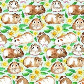 Little Guinea Pigs and Daisies in Watercolor on Pale Mint