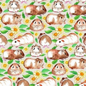 Little Guinea Pigs and Daisies in Watercolor on Light Tan