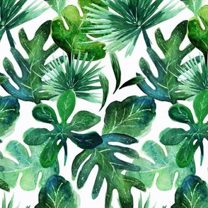 tropical Leaves M