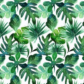 tropical Leaves S