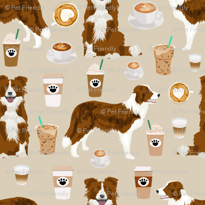 Border Collie  coffee cafe dog fabric pet dog breeds collies natural