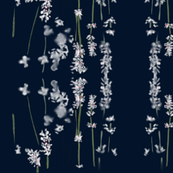 White Lavender Nighttime Navy