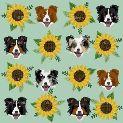Border Collie sunflower floral bouquet dog fabric green