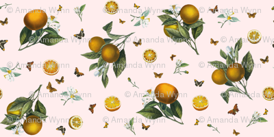 Oranges and Orange Butterflies on Blush